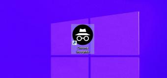 Incognito Google Chrome Windows Shortcut Icon 340x160